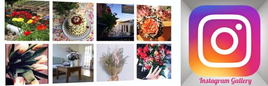 [Resim: instagram-gallery.jpg]